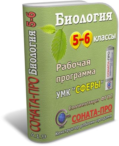 Источник: Рабочая программа по учебному комплексу...  A16) СОНАТА-ПРО: Русский язык.  6 класс.